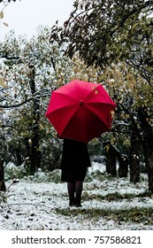 Girl with red umbrella from behind in the forest.