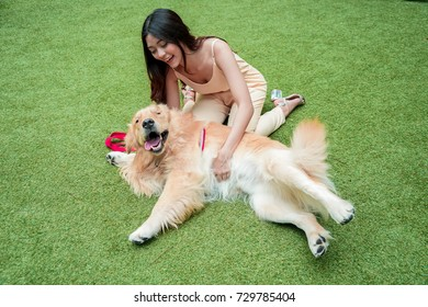 Girl relax playing with golden retriever dog in green lawn.