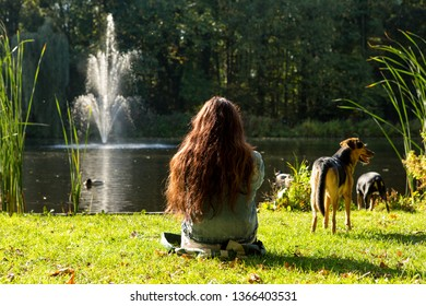 A girl relaxing in the grass on the side of a pond with 2 dogs in the Netherlands.