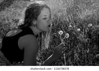 girl relaxing on the grass in the park. Girl blowing on dandelions. Backlight. Sunset in summerday.Allergic to pollen of flowers.