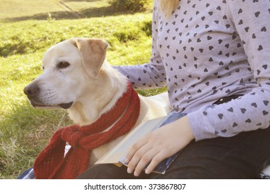 girl resting with her dog labrador in the park