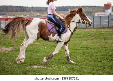 Girl rides a horse. Horsewoman riding a horse. Black horse and girl. Horseback Riding. Horseback riding. Caring for horses. Walking in the summer. Horse grace