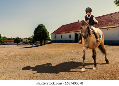 Girl riding her horse on farm paddock. Young jockey equestrian girl riding a brown horse in the summer.