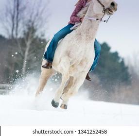 girl riding horse bareback. Winter scene with snow flying