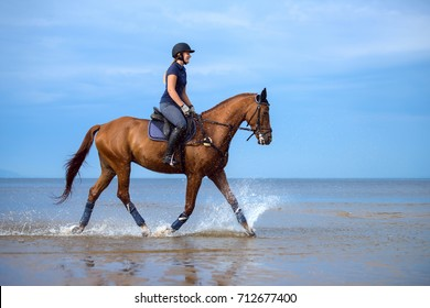 Girl riding a horse on coastline at the beach in early morning. Equestrian sport.
