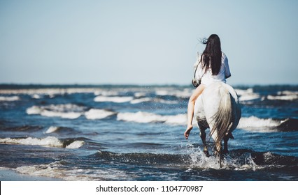 Girl riding on the white stallion in the sea. Horseriding. Trotting. View from the back.