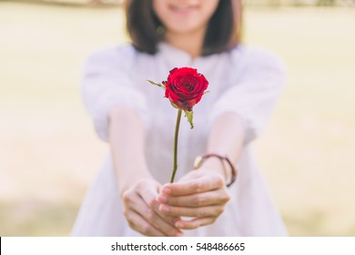 The girl with the rose