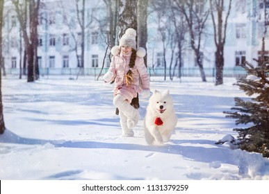 the girl runs with a Samoyed puppy in a snow-covered park on New Year's Eve.