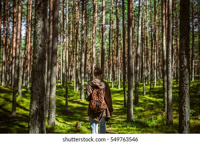 Girl searching mushrooms, pine tree forest in spring time