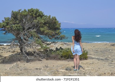A girl in short blue dress looks at the sea near a tree