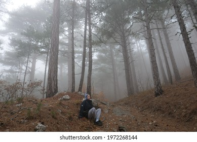 the girl is sitting alone in the middle of a foggy pine forest, somewhere far away in the mountains