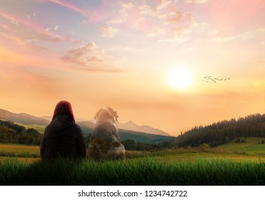 girl sitting in a meadow watching sunset sky, the ghost of her dog being next to her, pet death spirit bond concept