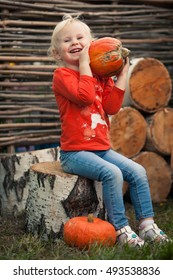 Girl sitting on a stump in the background of birch stumps and sunflower