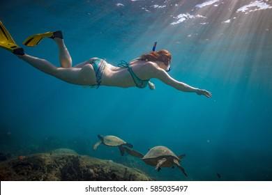 A girl snorkeling over coral reef full of ocean underwater life. Freediver watching sea turtles in natural habitat.