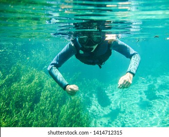 Girl snorkeling at Sucuri river water surface, crystal clear, transparent blue river, in Bonito, Mato Grosso do Sul, Brazil