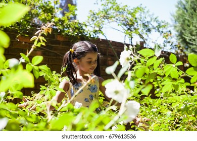 Girl standing amidst green plants in garden on sunny day