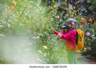 The girl standing holding the camera and  Photographing roses in the garden.