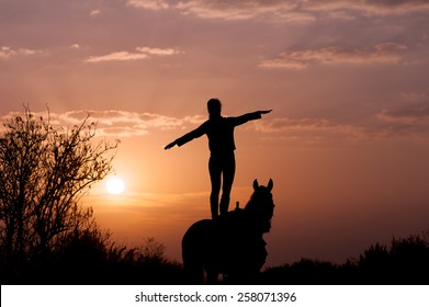 Girl standing on a horse with raised hands to the side like an airplane wing. Looks into the distance at dawn. Silhouette of a woman and a horse on a background of dawn