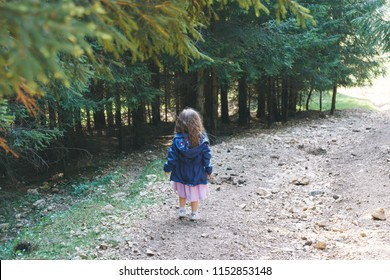 girl standing on path and looking at forest