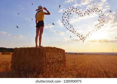 Girl standing on a straw bale in a field at sunset and looking at birds in heart formation .