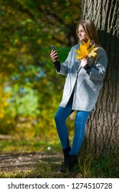A girl stands near a tree by the lake and holds a branch with his hand. sunny morning. Beautiful girl holds autumn leaves in hand and makes selfie. A girl in a gray coat stands near a tree.