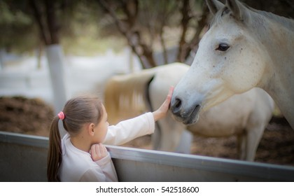 A girl is stroking a horse at the farm on equine assisted therapy