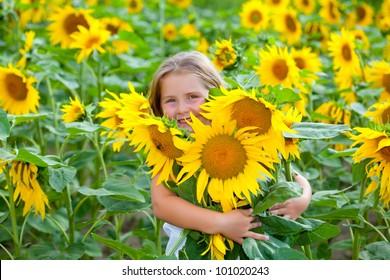 Mädchen auf dem Feld mit Sonnenblumen