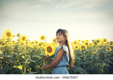girl in a sunny field of sunflowers