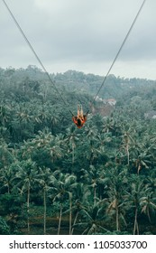girl swinging on a swing over rice terraces in Ubud, Bali, adventure, travel female, amazing, action sport, sky, exstream