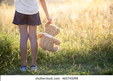 The girl and a teddy bear in a meadow. soft focus