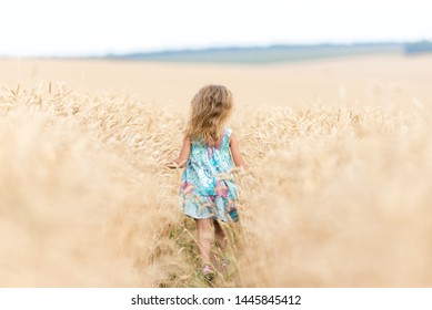 Girl teenager with long hair runs in the field. Wheat field. Freedom concept