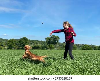 La fille jette une pierre pour son chien dans un champ par beau temps