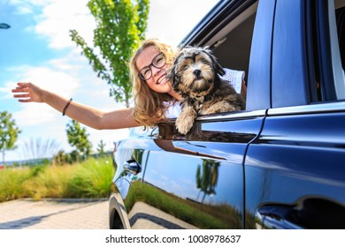 a girl traveling by car with her family and a dog