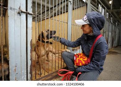 Girl, volunteer, petting stray dog sitting behind bars in the cage, dog putting its paw on her knee. October 4, 2019. Municipal animal shelter.  Borodyanka, Ukraine