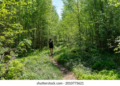 Girl walking along path in the forest. Bright, sunny day. High Coast area, Sweden