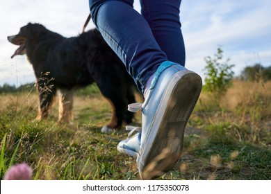 the girl is walking with a dog on a leash. view from the bottom to the feet and the dog.
