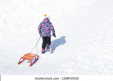 Girl walking up the hill on snow and pulling up her sleds. Active leisure outdoors in winter