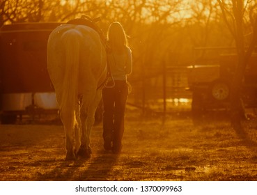 Girl walking horse in warmth of sunset, happiness and warmth concept with pet.