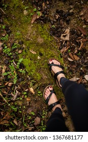 Girl Walking Through Forest During Spring, Green Dewy Moss, Looking Down at Feet