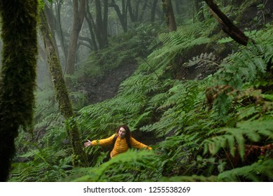 The girl is walking through the mystical forest.Beautiful forest on a rainy day. Hiking trail. Anaga Village Park - Ancient Forest in Tenerife, Canary Islands.