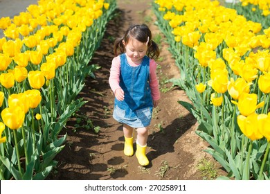 Girl walking Tulip Fields