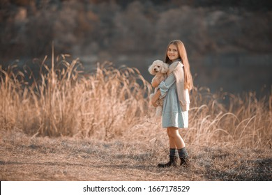 A girl walks with a dog in a meadow.
