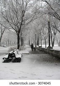 Girl walks her dogs during a snowstorm in Parc Lafontaine in Montreal.