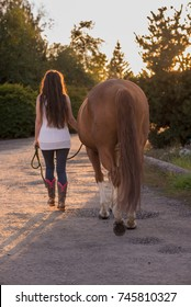 A girl walks her horse along a pathway in the late afternoon sun.
