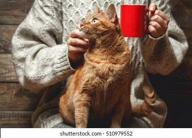 Girl in warm sweater drinking coffee with red cat on her lap.