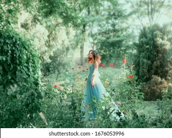 Вrunette girl wavy hair Hairstyle. green fairy forest. Medieval young beautiful woman Princess. blue vintage watercolor fluffy full dress, long train. Backdrop summer nature, garden trees red roses