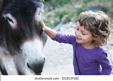 girl wearing a purple shirt smiling next to donkey in a petting zoo