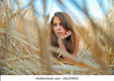 girl in a wheat field at sunset. girl portrait of ears of wheat