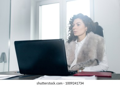 The girl is working at the computer in the office in front of the window