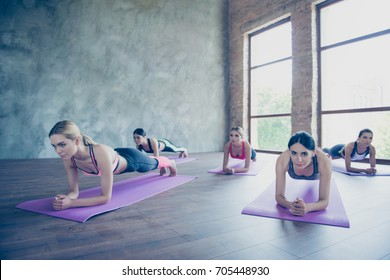 Girl1s power! Abs plank work out. Five focused sporty girls are doing plank work out to keep abdomen fit, wearing modern sport outfit, barefoot in modern loft studio